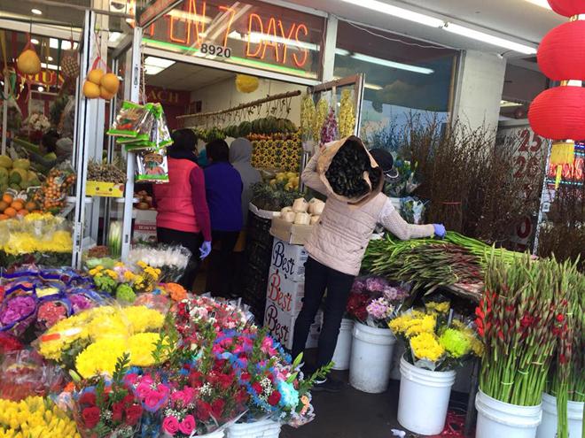 Có đầy đủ các loại hoa chơi tết