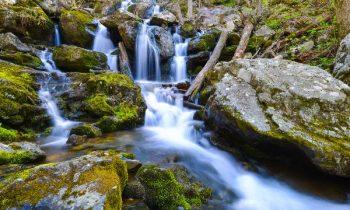 Top những công viên đẹp nhất nước Mỹ đáng để đi một lần