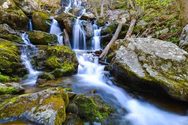 Công viên quốc gia Shenandoah, Mỹ