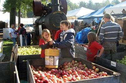 Lễ hội táo tại Mỹ